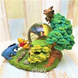 DISNEY Winnie the Pooh Snowglobe Snow Dome Figure Music Box Wind Day #50