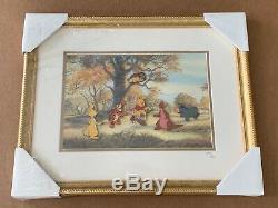 Disney Disneyland Winnie the Pooh & Friends LE 500 Framed Pin Set