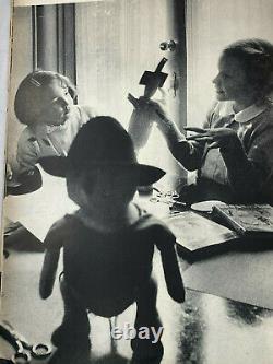 Hibou Avectag Agnes Brush Winnie The Pooh Stuffed Peluche Animal Disney Antique Doll